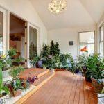 風水 玄関に置く観葉植物で健康運アップのおすすめ植物は