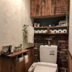風水でトイレに絶対にオススメしたい観葉植物8選!風水と観葉植物の基礎知識
